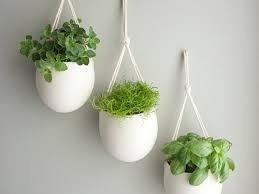 Indoor Ceramic Herb Pots