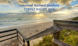homeschool persuasive speech by v stanley on prezi canaveral national seashore