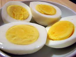 अंडे के लिए चित्र परिणाम