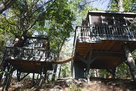 The 10 Best Airbnb Treehouse Destinations In The World  Green Treehouse Byron Bay