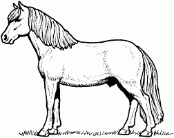 Small Picture Coloring Pages Horses Colouring Pages Pretty Horse Coloring Page