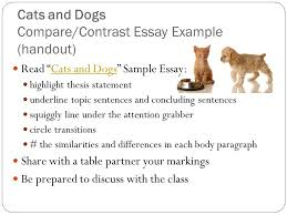 grabber essay co good attention grabbers compare contrast essay 5 paragraph
