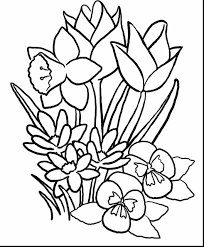 Small Picture extraordinary spring flower coloring pages with coloring pages of