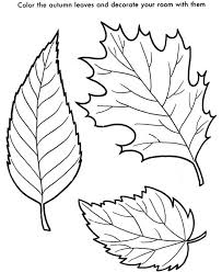 Small Picture 25 unique Fall leaves coloring pages ideas on Pinterest Leaf