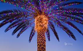 Temecula Ca Christmas Lights Christmas Lights On A Palm Tree Temecula Valley California