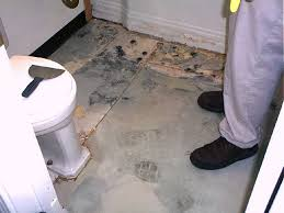 laying lino in bathroom 28 images luxury how to fix mold on vinyl flooring