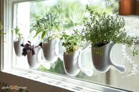 window herb garden kit garden therapy
