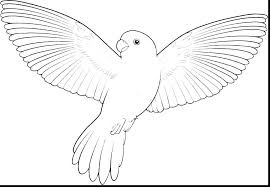 Coloring Pages Of Birds Free Flying Bird Angry Fr