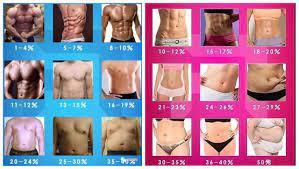 体 脂肪 率 26 女性