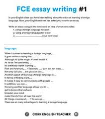 fce article writing the person i most admire english fce exam essay examples