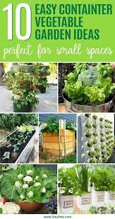 easy container vegetable garden ideas