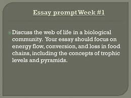 essay prompt week discuss the web of life in a biological  1 essay