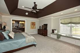 tray lighting ceiling. Lighting:Ceiling Paint Designs Magnificent Ceilings Design Ideas For Tray And Trays Cool Decor Textured Lighting Ceiling