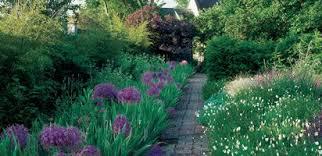 english garden designs. Brilliant Garden Purple Alliums White California Poppies Garden Design Calimesa CA Inside English Designs A