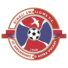 Swallows fc results and fixtures. Dingli Swallows Fc Logo Download Logo Icon Png Svg
