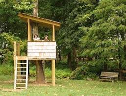 simple tree house pictures.  Tree Diy Tree House Best Simple Ideas On Treehouse Bed    For Simple Tree House Pictures H