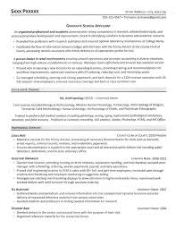 What Is Needed For A Modern Resume Resume For Graduate School