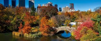 Urban Ecology Where The Wild Meets The City Everyone The Plos
