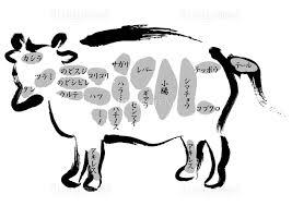 牛肉 内臓部位の名称の画像素材31051074 イラスト素材ならイメージナビ