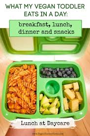 Sample Vegan Toddler Meals And Snacks For My 2 Year Old