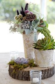 Scabiosa pods, Dusty Miller, Lamb's ear, succulents, birch bark vases and  tree slice