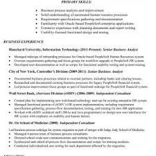 Business Analyst Resume Sample Fresh Business Analyst Resume Samples ...