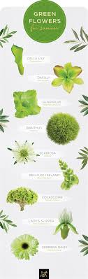 round flower names green page 1
