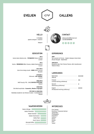 resumes layouts 50 inspiring resume designs and what you can learn from them learn