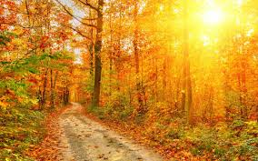 Fall Scenery Wallpapers Free Download ...