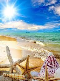 Summer Beach Wallpaper HD ...