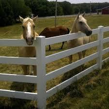 brown vinyl horse fence. Vinyl Horse Fence - 4 Rail Brown