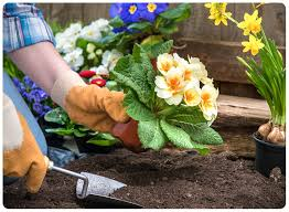not only do they have diffe purposes beautification versus nutrition but they require diffe methods of gardening while edible gardening tends to