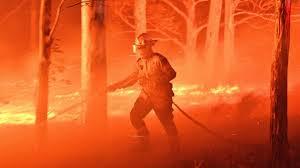 fireman do his job fire in australia