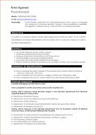 Job Resume Professional Resumes Service Examples Free How To Write