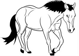 Disegno Di Cavallo Da Colorare Disegni Da Colorare E Stampare Gratis