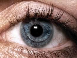 Punane silm ksa silmakeskus