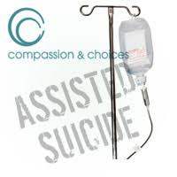 euthanasia pros and cons essay euthanasia pros and cons