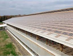 sunsky rooflights provide plenty of light inside this warehouse in fact no electrical light was installed in this location