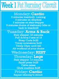 beginners fat burning workout curcuit week 1
