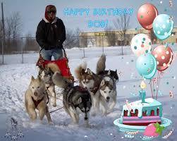 Sending many husky hugs to our VP Bob on... - Free Spirit Siberian ...