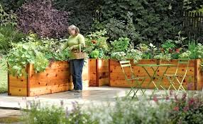 48 in x 48 in cedar raised garden bed cedar raised garden design elevated beds the
