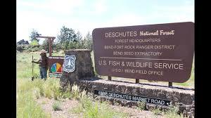 Summer Seasonal Jobs Deschutes National Forest Offering Summer Seasonal Jobs Ktvz