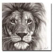 realistic lion face drawing. Modren Drawing Stunning Lion Drawing More Intended Realistic Face Drawing E