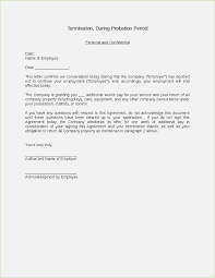 How To Write A Termination Letter To An Employer Termination Letter During Probation Period format thepizzashopco 85
