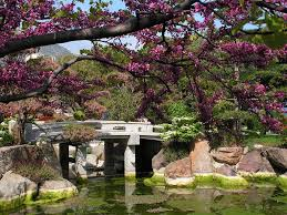 Garden:Lovely Japanese Gardens With Sakura Tree And Garden Bridge Idea Japanese  Garden Decorated for