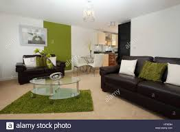 Wohnung Interieur Moderne Loungekücheesszimmer