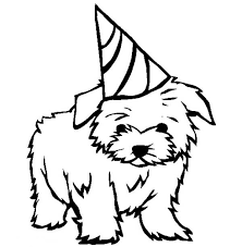 Small Picture Puppy Dandie Dinmont Terrier Puppy for your birthday present
