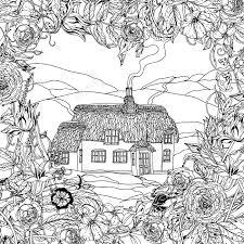 フィールド ポピーとビクトリア朝の家zenart スタイルの大人の塗り絵の春パターン手描きレトロ落書