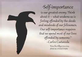 Carlos Castaneda Quotes Magnificent Selfimportance Is Our Greatest Enemy Think About It What Weakens