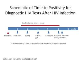 Hiv Antibody Testing At Hup